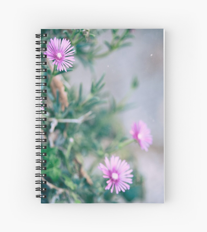 flowers  by Giuliamazzarese