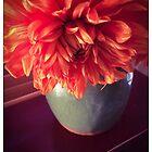 Orange Red Green by Barbara Wyeth