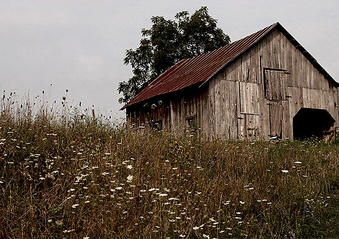 The Barn by denise romano