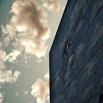 kites by simonefrances