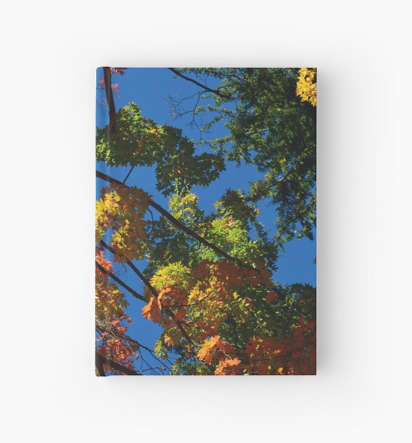 Autumn Sky by DustinPhotos