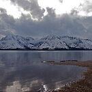 Jackson Lake Wyoming by Judson Joyce