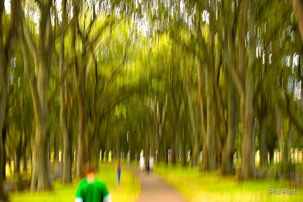 A walk in the park by Phil Platt