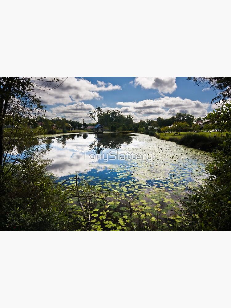 Pond 2 by TonySlattery