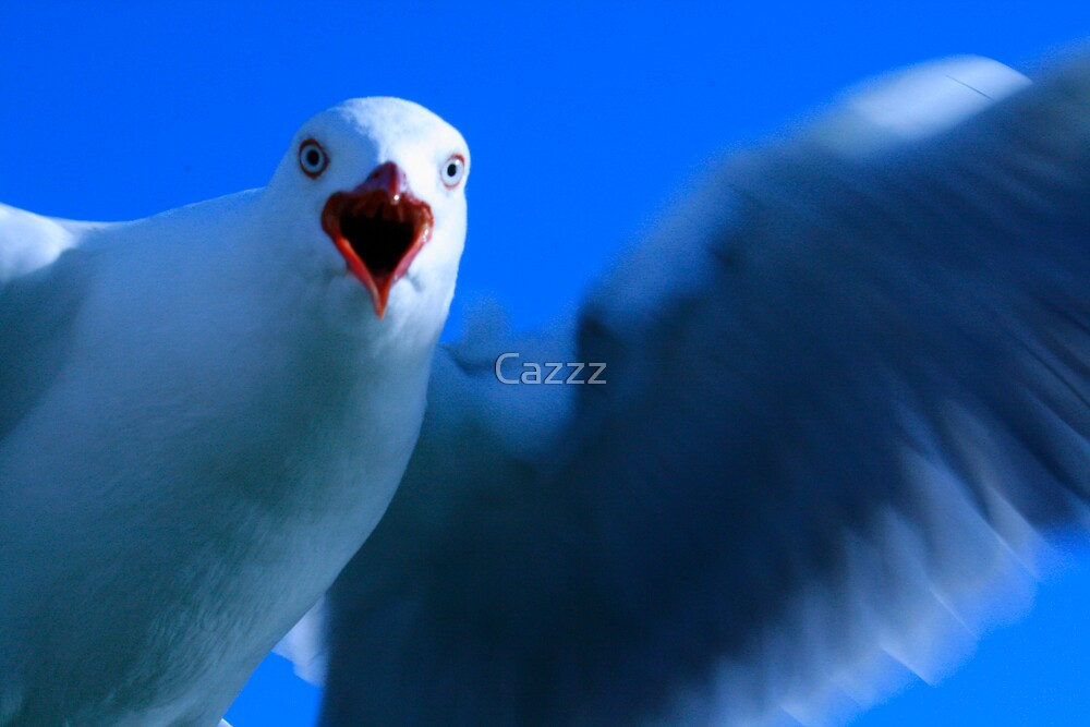 In your face by Cazzz