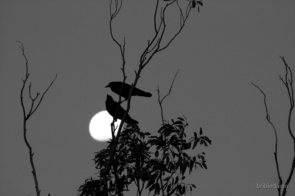 Crows at the Moon by bribiedamo