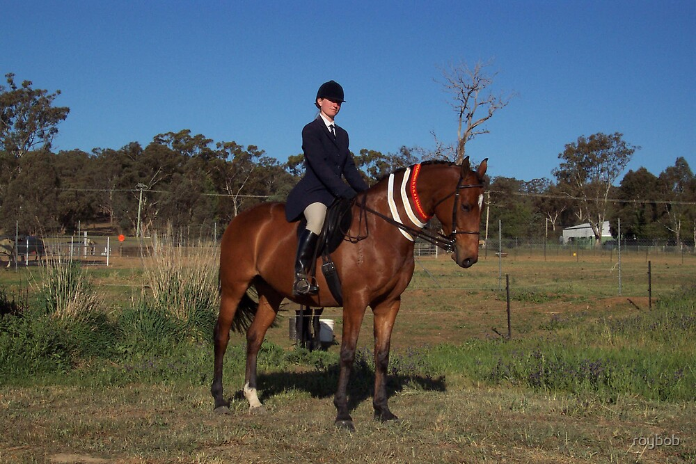 Winning Horse by roybob