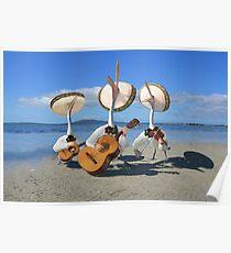 Pelican Mariachi band Poster