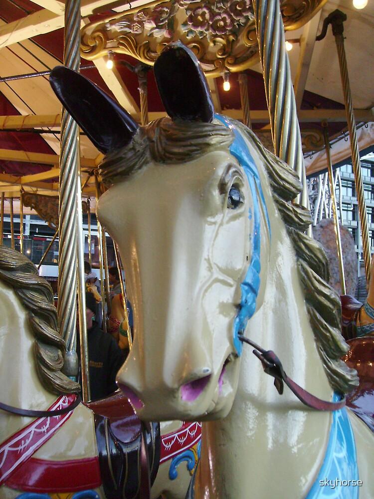 Heyn Carousel Horse 1 by skyhorse