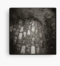 Texture Path Canvas Print