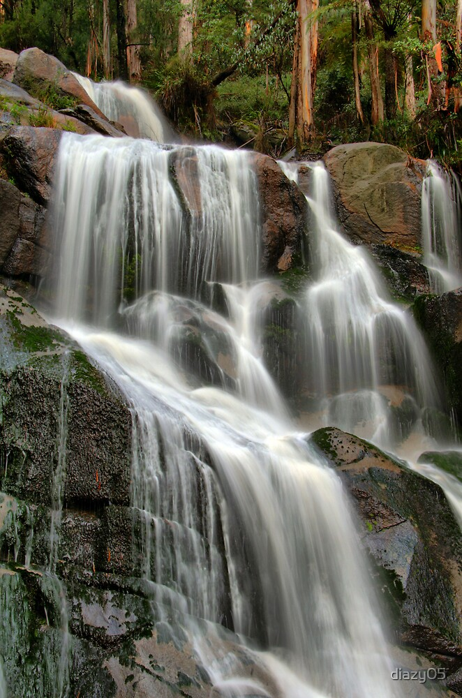 Falls Revisited ... by Di Jenkins