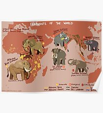 Elephants of the World Poster