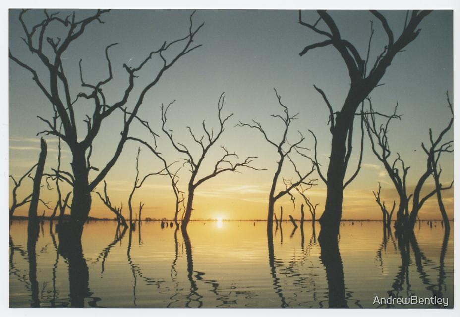 Kow swamp sunset  by AndrewBentley