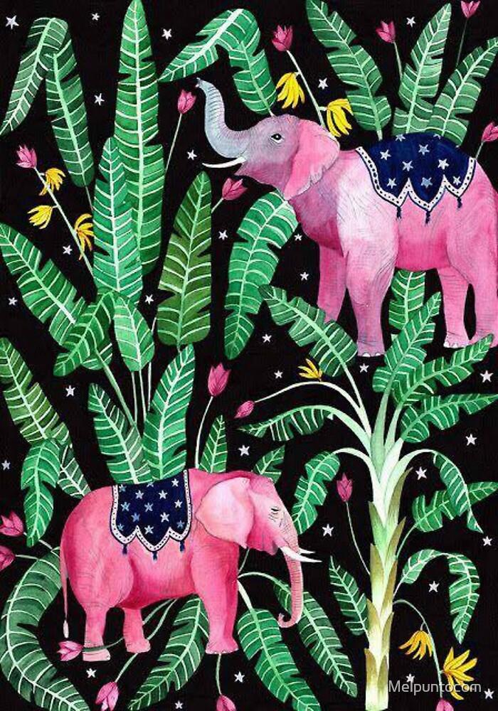 a beautiful elephants by Melpuntocom