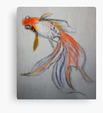 Goldfish Pond (close up #10) Metal Print
