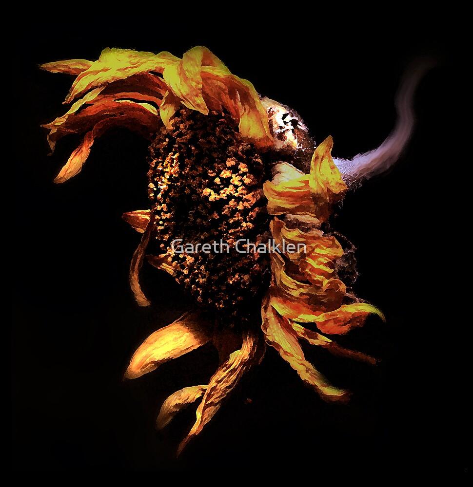 Sunflower by Gareth Chalklen