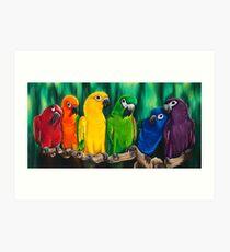 Polychrome Parrots  Art Print