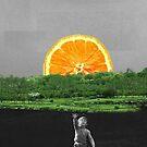 Follow your dreams by Teona Mchedlishvili