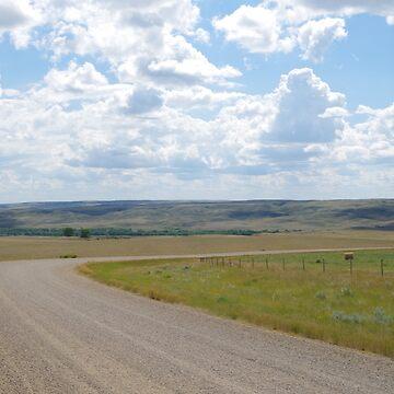 Saskatchewan Gravel Road by kennedywesley