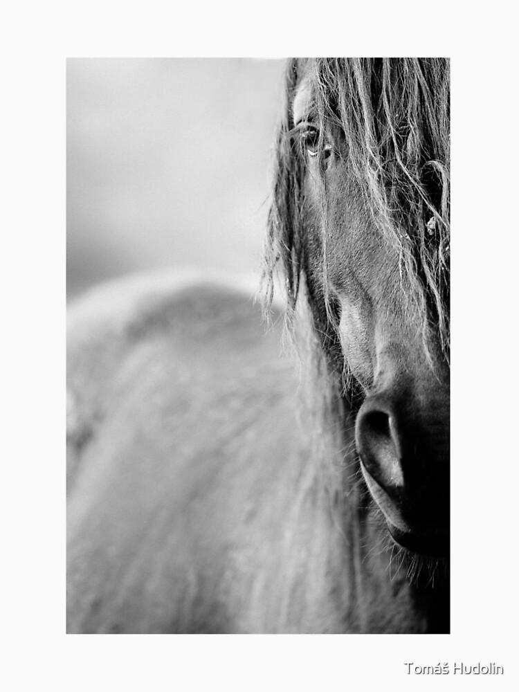 Pferd von Hudolin
