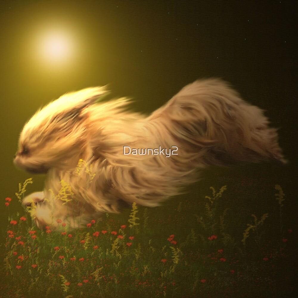 Free, as the wind by Dawnsky2
