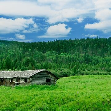 Cypress Hills by kennedywesley