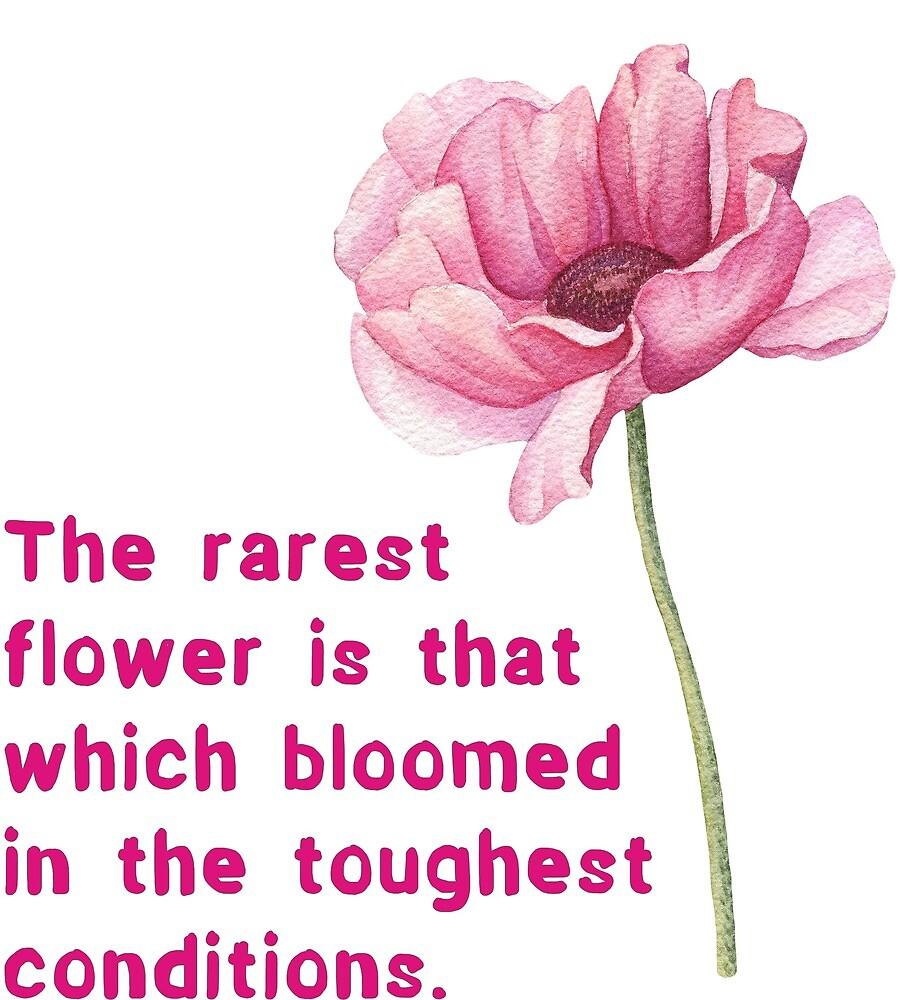 The rarest flower . . . ! by Ian McKenzie