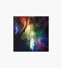 Rainbow forest Art Board