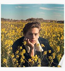 Cole Sprouse Poster