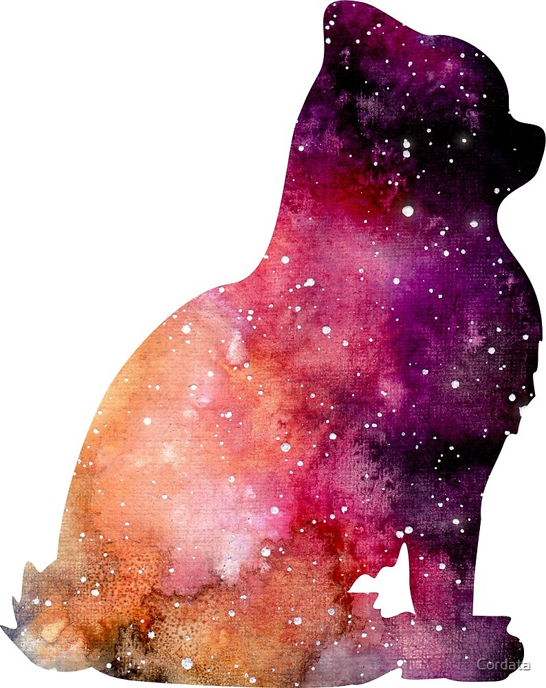 Space Cat by Cordata