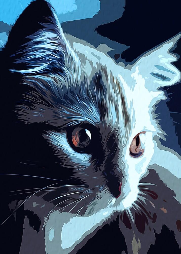 In Cat's Eyes by Andrea Mazzocchetti