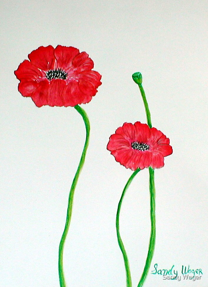 Poppies by Sandy Wager