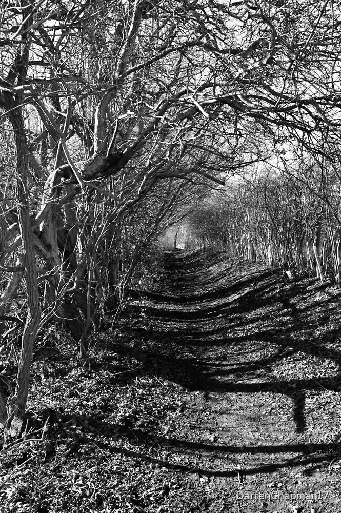 Shadows  by DarrenChapman17