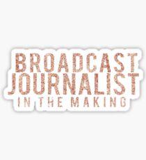 Broadcast journalist in the making sticker Sticker
