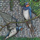Swallows by Ronan Crowley