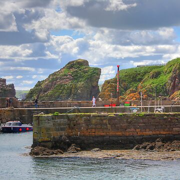 St. Abbs Harbour by tomg
