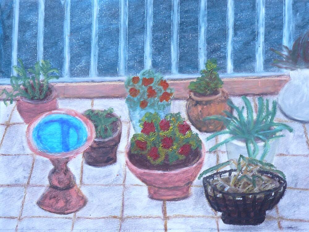 Balcony Still Life by Joan Wild