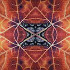 Red Leaf kaleidoscope by Hope Martin