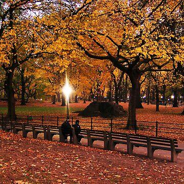 Central Park by jaymody