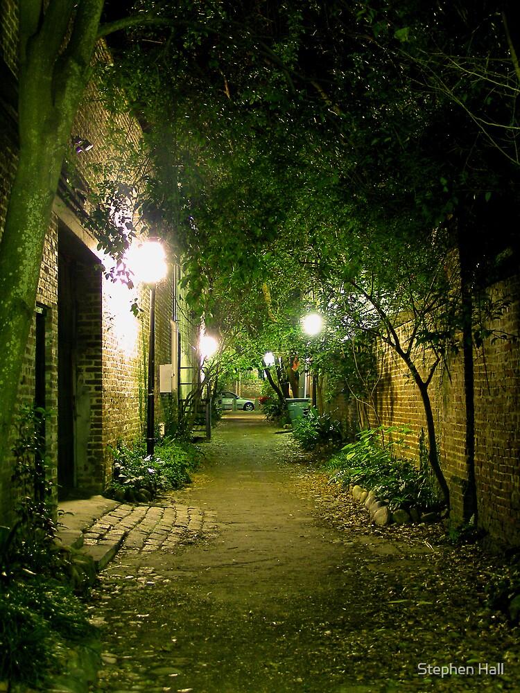Philadelphia Alley by Stephen Hall