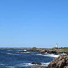 Sydney Lighthouse Over the Rocks by Pandamatastic