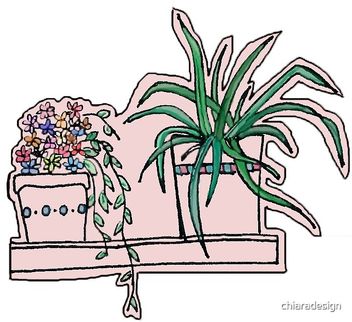 Flowers and Plants by chiaradesign