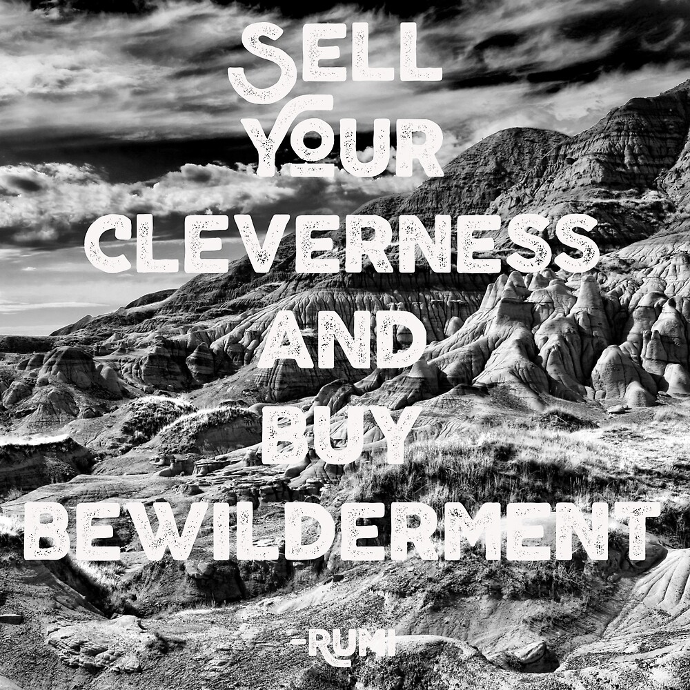 Sell Your Cleverness by WildRoots
