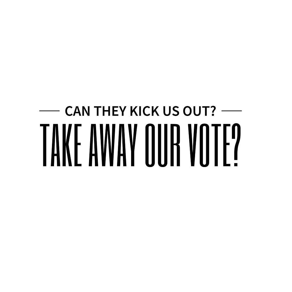 Take away our vote? by TheBookAuror
