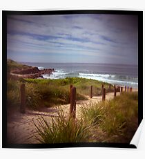 holga madness.....sea view with shark bait Poster