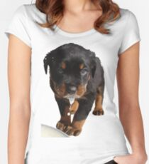 Cute Rottweiler Puppy WIth Milk On Muzzle Women's Fitted Scoop T-Shirt