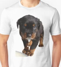 Cute Rottweiler Puppy WIth Milk On Muzzle T-Shirt