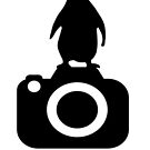 Photo Rangers Penguin TShirt by Photo Rangers