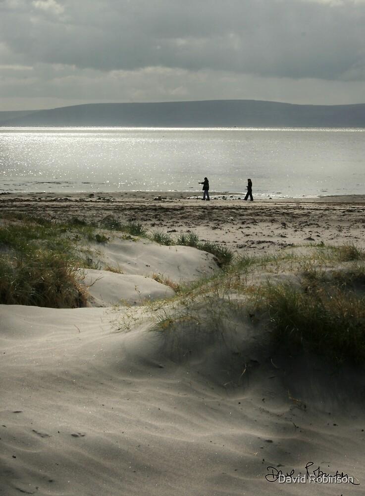 Walk on the beach by David Robinson