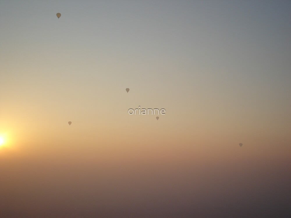 Balloon Silhouette by orianne